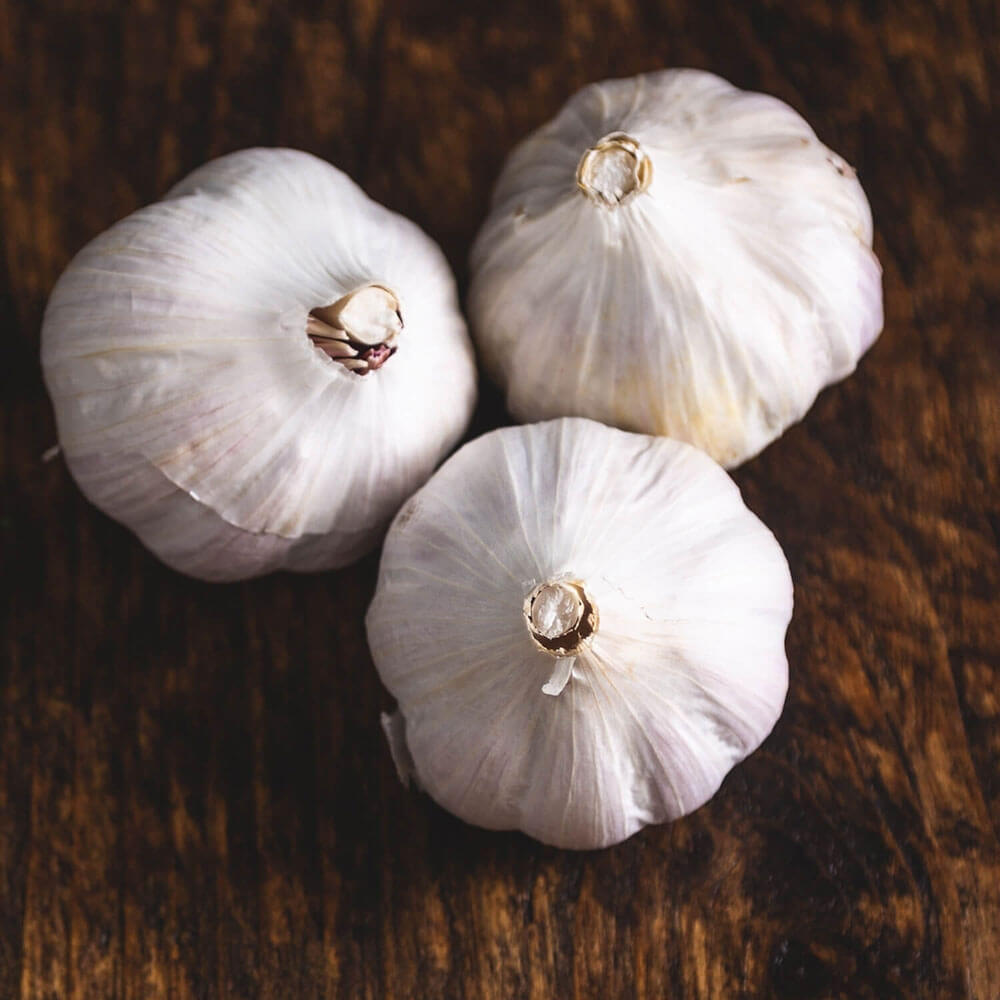 Image of Garlic being produced