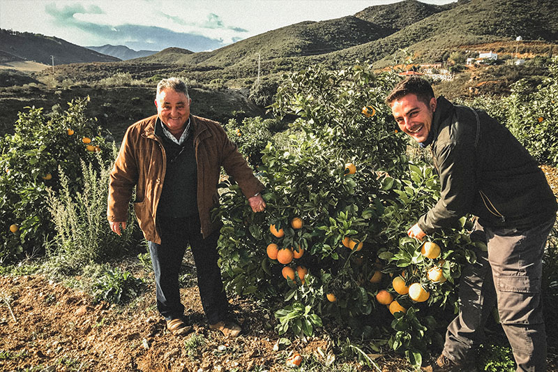 >Premium Organics are group of Spanish farmers specialising in citrus fruits with stunning groves of grapefruits, oranges, clementines and lemons.